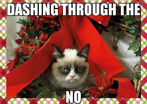 I Hate Christmas.I Think I Hate Christmas Lance Schonberg
