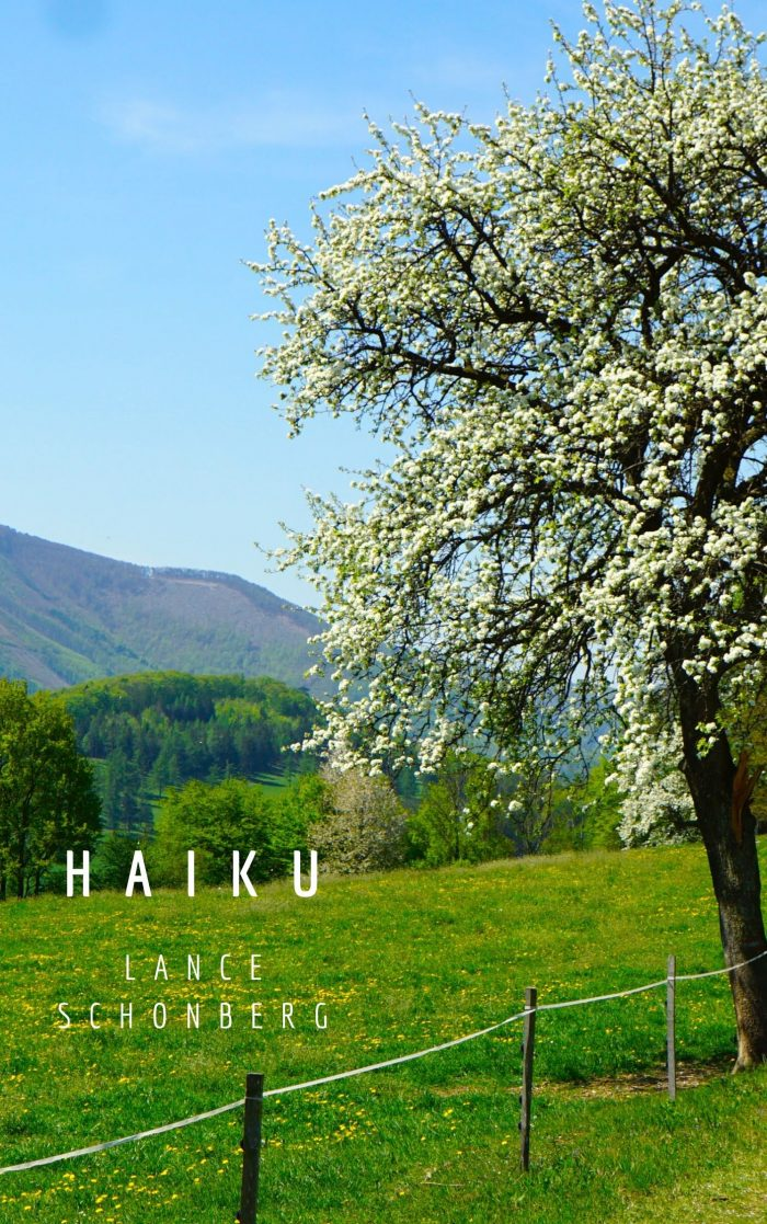 Book Cover: Haiku