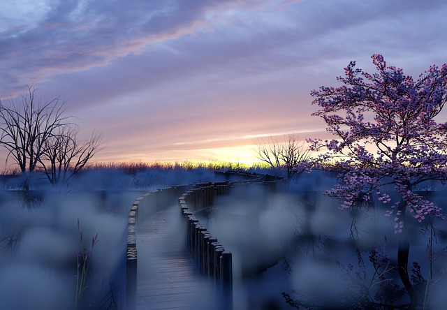 Mist rising out of the marsh around a boardwalk.